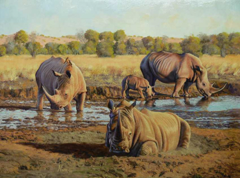 White Rhino at the water hole